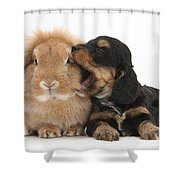 Cockerpoo Pup And Lionhead-lop Rabbit Shower Curtain
