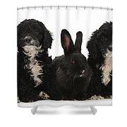 Cockerpoo Pups And Rabbit Shower Curtain