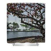 Coconut Island In Hilo Bay Hawaii Shower Curtain