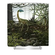 Coelophysis Dinosaurs Walk Amongst Shower Curtain