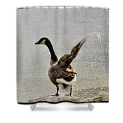 Cold Goose Bath Shower Curtain