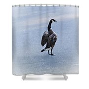 Cold Goose Dreams Shower Curtain