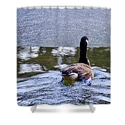 Cold Swim In The Pond Shower Curtain