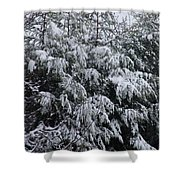 Cold Winter Snow Shower Curtain