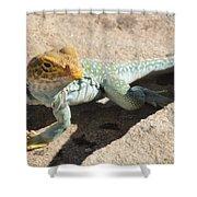 Collard Lizard Shower Curtain