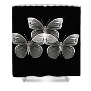 Collection2 Shower Curtain