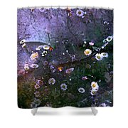Color 99 Shower Curtain