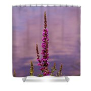 Color By The River Shower Curtain