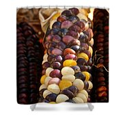 Color Corn Shower Curtain