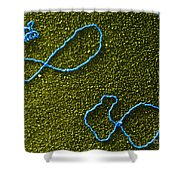 Color Enhanced Tems Of Kleinschmidt Shower Curtain by Omikron