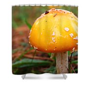 Color In The Grass Shower Curtain