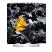 Color Me Beautiful Shower Curtain