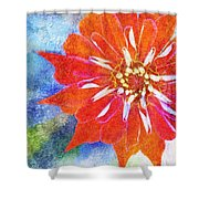 Color Symphony IIi Shower Curtain
