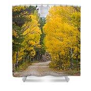Colorado Autumn Aspen Road Boulder County Shower Curtain