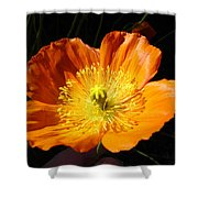 Colorado Flower Shower Curtain