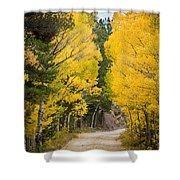 Colorado Rocky Mountain Aspen Road Portrait  Shower Curtain