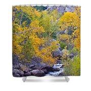 Colorado Rocky Mountain Autumn Canyon View Shower Curtain