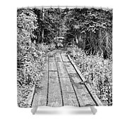 Colorado Rocky Mountain Forest Path Bw Shower Curtain