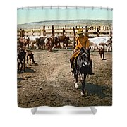 Colorado: Round Up Shower Curtain