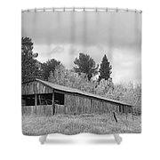 Colorado Rustic Autumn High Country Barn Bw Shower Curtain