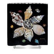 Colored Seashells Shower Curtain
