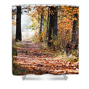 Colorful Autumn Landscape Shower Curtain