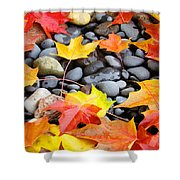 Colorful Autumn Leaves Prints Rocks Shower Curtain