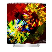 Colorful Blade Shower Curtain