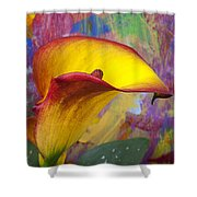 Colorful Calla Lily Shower Curtain