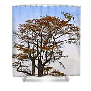 Colorful Cypress Shower Curtain