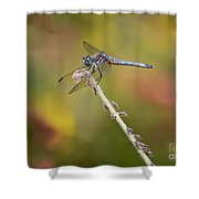 Colorful Dragonfly Dream Shower Curtain