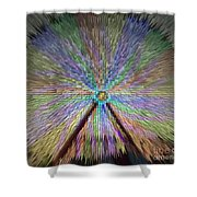 Colorful Fair Wheel Shower Curtain