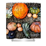 Colorful Fall Harvest Shower Curtain