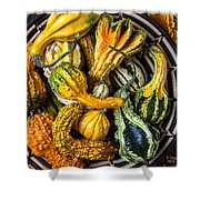 Colorful Gourds In Basket Shower Curtain