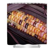 Colorful Indian Corn Shower Curtain