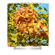Colorful Leaf Cluster Shower Curtain