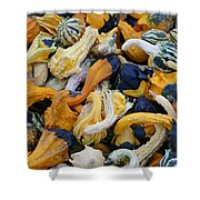 Colorful Mix Of Gords Shower Curtain