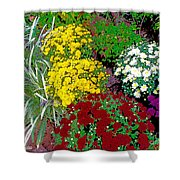 Colorful Mums Photo Art Shower Curtain