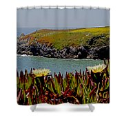 Colorful Point Shower Curtain