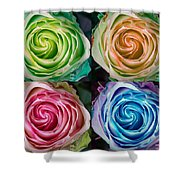 Colorful Rose Spirals Shower Curtain