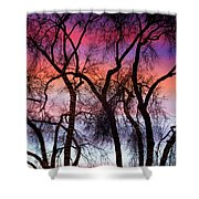 Colorful Silhouetted Trees 9 Shower Curtain