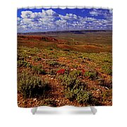 Colorful Valley From Fossil Lake Trailsil Bu Shower Curtain