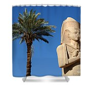 Colossus Of Ramses Ll Shower Curtain