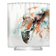 Colours Of Samburu Shower Curtain