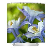 Columbine-1 Shower Curtain