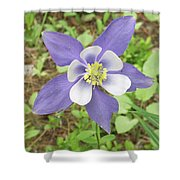 Columbine In The Woods Shower Curtain