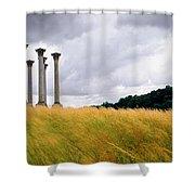 Columns 2 Shower Curtain
