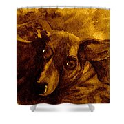 Come In Sepia Version Shower Curtain