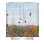 Coming In For Landing Shower Curtain