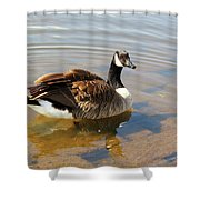 Coming On Shore Shower Curtain